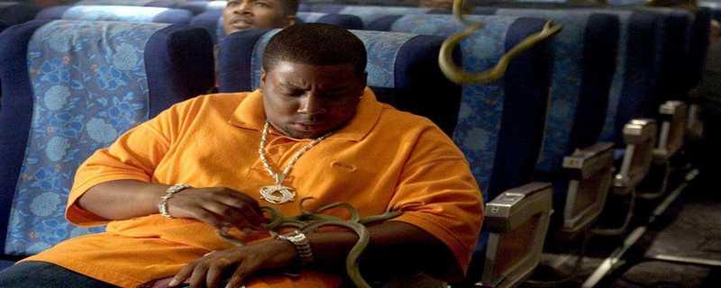 飞机上有蛇是哪部电影